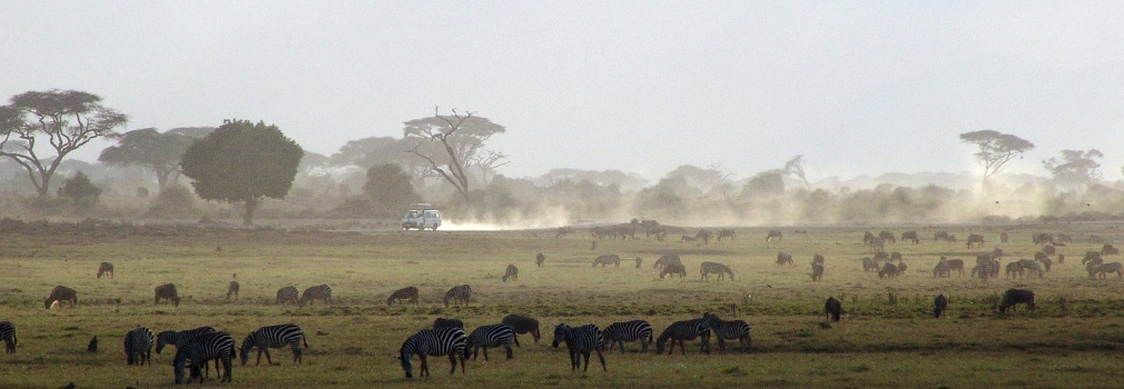 Op Safari in Kenia