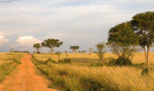 Visum Oeganda